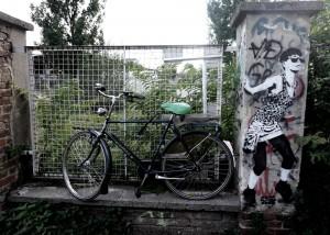 bikes31