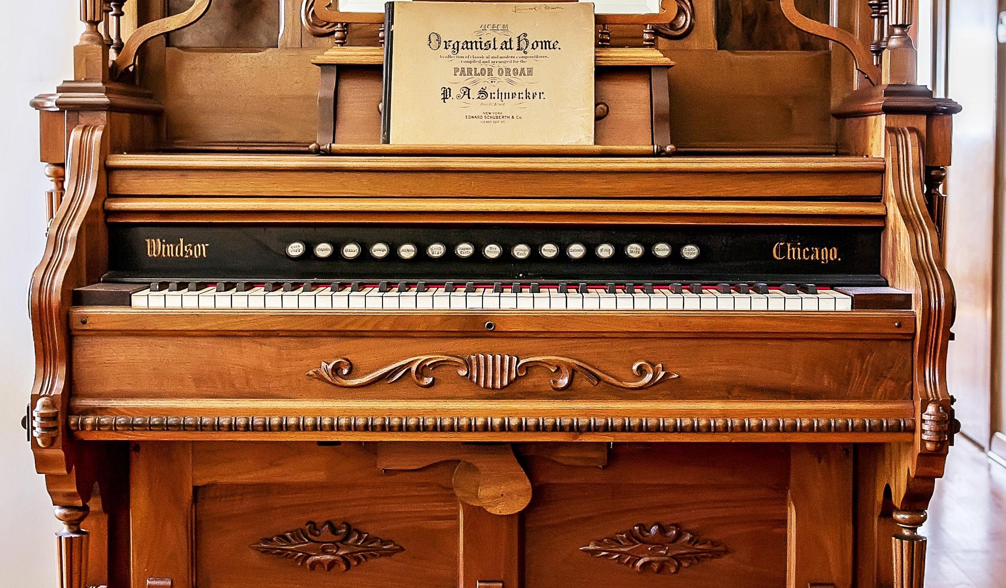 reed+organ