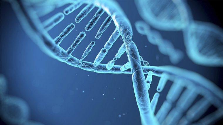 Científicos logran guardar audio en molécula de ADN