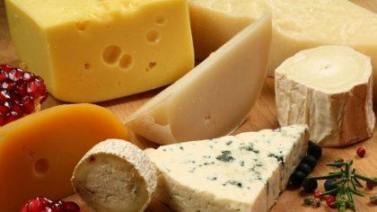 Cheese Porn Odyssey: El primer festival de queso y techno del mundo
