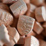 Miles de pastillas de MDMA confiscadas en festival de Hardstyle