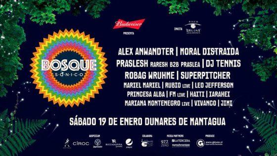 Bosque Sónico, un nuevo festival chileno anuncia su primera edición