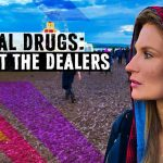 BBC Lanza Nuevo Documental 'Festival Drugs: Meet the Dealers'