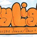 Organizan el primer rave para adultos con discapacidad