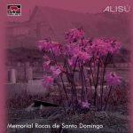 Pueblo Nuevo Netlabel se complace en presentar el disco «Memorial Rocas de Santo Domingo», de la productora electrónica chilena Alisú.
