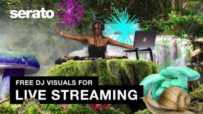 VIDEO   SERATO está ofreciendo visuales gratis para los streaming de Djs