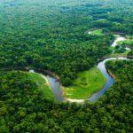 AUDIO | Jean-Michel Jarre compone música en apoyo al medio ambiente y la Amazonia