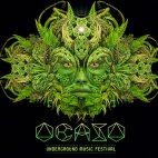 festival musica electronica costa rica tamarindo